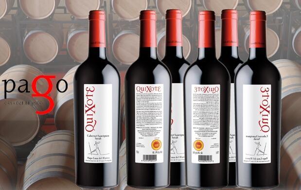 Caja de 6 botellas de vino QuiXote 2005