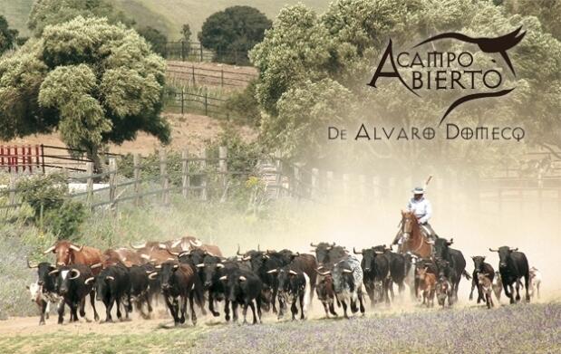 Visita la ganadería de Álvaro Domecq