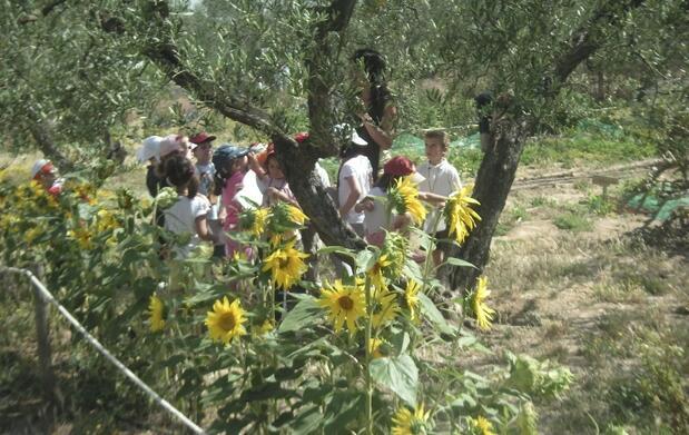 Domingo en familia en Granja Cuna