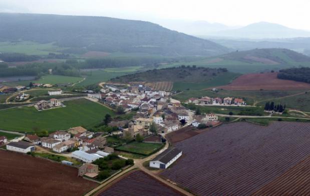 Escapada a Navarra + experiencia trufera y palacio real