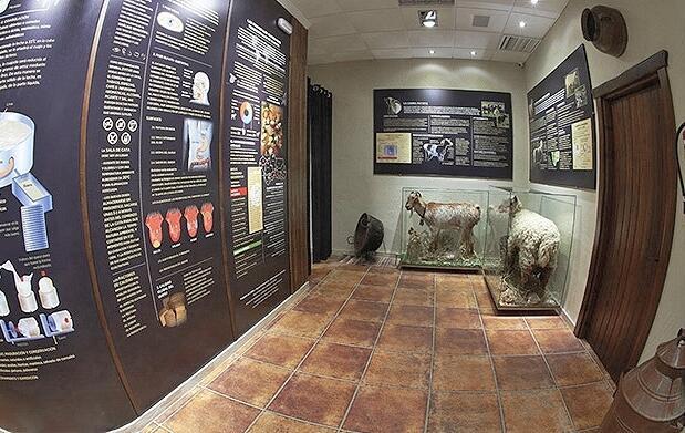 Visita museo El Bosqueño + bote de queso