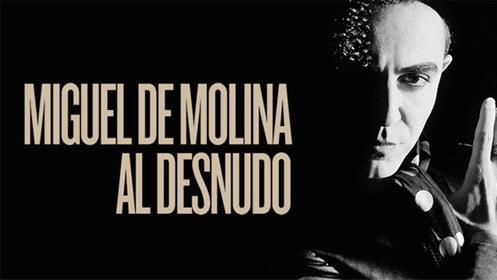 Entradas Miguel de Molina al desnudo Madrid