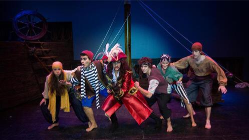 Entradas Peter Pan, el Musical Madrid