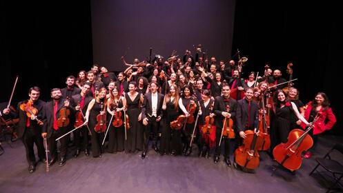 Abono Camerata Musicalis Teatro Nuevo Apolo Madrid