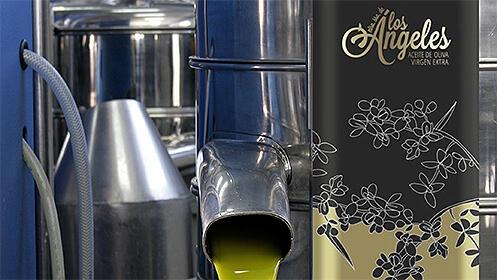 Lata 5 l. aceite de oliva virgen extra