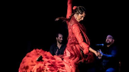 La Vida en Flamenco